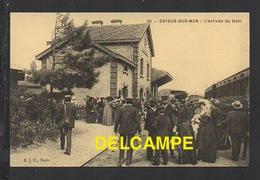 DF / CHEMINS DE FER / GARE DE CAYEUX-SUR-MER ( SOMME ) / L' ARRIVÉE DU TRAIN / ANIMÉE - Stations With Trains