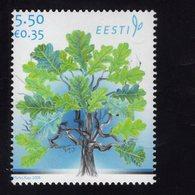 614140267 ESTLAND ESTONIA 2008 ** MNH  SCOTT 590 OAK TREE FLORA - Estonie