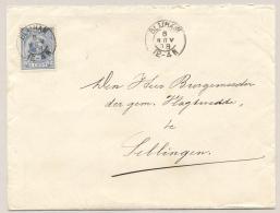 Nederland - 1898 - 5 Cent Hangend Haar Op Cover Van Kleinrond / KR BLIJHAM Naar Sellingen - Periode 1891-1948 (Wilhelmina)