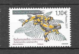 Salamandra Communa. N° XXXX Chez YT. (Voir Commentaires) - Reptielen & Amfibieën