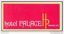 Bibione 70er Jahre - Hotel Palace - 12 Seiten Mit 16 Abbildungen - Italia