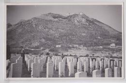 MONTE CASSINO - War Graves In The Actual Battle Area Photo Postcard - Italia