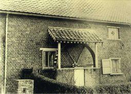 VOLLEZELE - Galmaarden (Vlaams-Brabant) - Molen / Moulin - De Hondenmolen In 1950 - Galmaarden