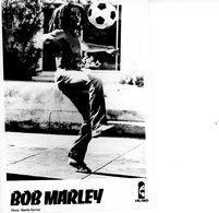CHANTEUR . MUSICIEN . ROCK  . Le Chanteur Musicien  BOB MARLEY - Personas Identificadas