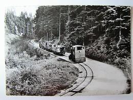 FRANCE - MOSELLE - ABRESCHVILLER - Le Petit Chemin De Fer Forestier - 1957 - France