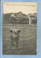 Auvers-sur-Oise (95) Un Regard Sympatique (sic - Sympathique) 2 Scans Vache Faute D'orthographe - Auvers Sur Oise