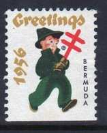 Bermuda Christmas Charity Label From 1956 In Mounted Mint Condition. - Cinderellas