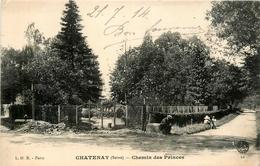 Chatenay * Chemin Des Princes * Pépinière - Chatenay Malabry