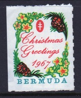 Bermuda Single Christmas Charity Label From 1967 In Mounted Mint Condition. - Cinderellas