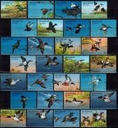 MDB-BK6-032-2 MINT PF/MNH ¤ BELARUS 1996 28w In Serie ¤ OISEAUX - BIRDS - PAJAROS - VOGELS - VÖGEL - AVES - Songbirds & Tree Dwellers