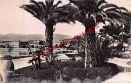 Vue Sur Les Hôtels Prise Du Jardin Albert - Cannes - Cannes
