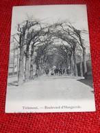 TIENEN -  TIRLEMONT  -  Boulevard D'Hoegaerde  -  1907 - Tienen