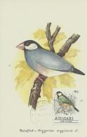 Carte Maximum - Oiseaux - Aitutaki Cook Islands - Padda De Java - Lonchura Oryzivora - Aitutaki