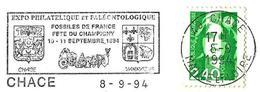 France (1994) - Chacé (49) : Fossiles De France : Ammonite, Gastéropodes, Lamellibranches, Crinoïdes. Fête Du Champigny. - Fossils