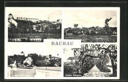 AK Dachau, Ortsansicht, Neue Amperbrücke, Partie Aus Dem Hofgarten - Dachau
