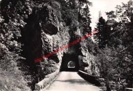 Route De La Grande Chartreuse - Saint-Pierre-de-Chartreuse - France