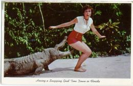 PIN-UP   Ragazza In Bermuda E Coccodrillo  Caiman Crocodile  Miami  Florida - Pin-Ups