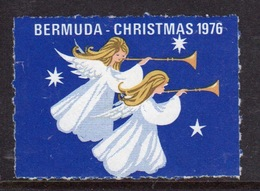 Bermuda  Single Christmas Charity Label From 1976 In Mounted Mint Condition. - Cinderellas