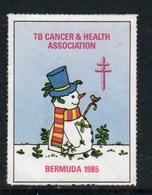 Bermuda  Single Christmas Charity Label From 1985 In Unused Condition. - Cinderellas
