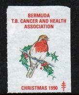 Bermuda  Single Christmas Charity Label From 1990 In Unused Condition. - Cinderellas