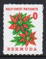 Bermuda  Single Undated Christmas Charity Label In Unused Condition. - Cinderellas