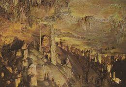 1 AK Spanien * Die Höhle Von Altamira Mit Stalaktiten Und Stalagmiten - Die Wandmalereien In Der Höhle Sind UNESCO Erbe - Cantabria (Santander)