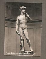IL DAVID  MICHELANGELO Firenze Galleria Accademia CARTOLINA NON VIAGGIATA - Sculture