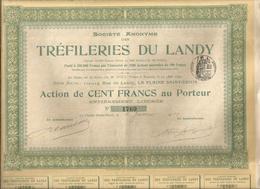 Action De Cent ,100 Francs , S.A. TREFILERIES DU LANDY , La Plaine Saint Denis, N° 1760/2000 , Frais Fr 1.95 E - Actions & Titres