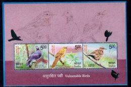 2017 India -Vulnerable Birds In India- MS - MNH** MI Block 166 Nilgiri Dove, Nilgiri Pipit, Broad-tailed Grassbird - Songbirds & Tree Dwellers