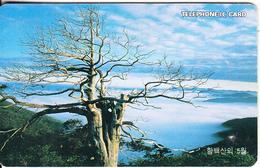 SOUTH KOREA(chip) - Dead Tree, Korea Telecom Telecard W5000, Used - Korea, South