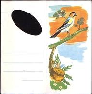 Romania Telegram Lux Telegramma Jay, Fauna Bird. R110 - Cartas