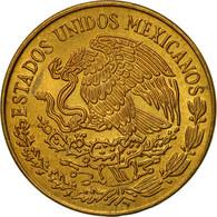 Monnaie, Mexique, 5 Centavos, 1976, Mexico City, TTB, Laiton, KM:427 - Mexico