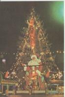 Christmas, Weihnachten, Noel, Kerstmis, Navidad, Natale, Unused - Autres