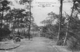 LE MOULLEAU - Forêt Des Abatilles - Route De La Corniche - France