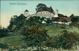 AK Bühlertann, Schloss Tannenburg, Um 1910 (30758) - Deutschland