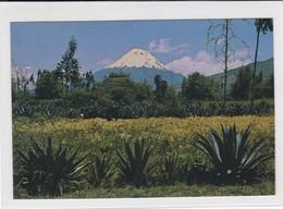 Tungurahua. Ecuadorian Andes. Ecuador - Ecuador