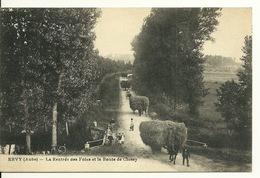 10 - ERVY / LA RENTREE DES FOINS SUR LA ROUTE DE CHESSY - Ervy-le-Chatel