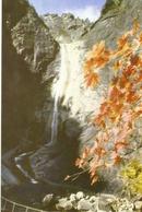 CP Corée Du Nord 1972 - Monts Keumkang-san, La Cascade Kouryong - Korea, North