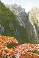 CP Corée Du Nord 1972 - Monts Keumkang-san, Les Pics Sédjon-bong - Korea, North