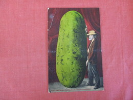Fantasy Large Watermelon Grown In California  Upper Left Crease   Ref 3025 - Agriculture