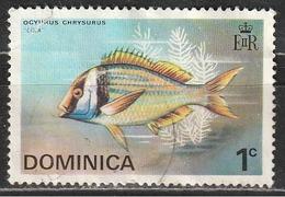 Dominica 1975 Yellow-tail Snapper (Ocyurus Chrysurus) - Animali (Fauna) | Pesci | Vita Marina - Dominica (1978-...)