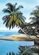 1 AK Kamerun Cameroun * Landschaft An Der Küste Von Kamerun - IRIS Karte 7035 - Kamerun