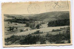 CPA - Cartes Postale - Belgique - Lierneux - Vallée Groumont Vers La Baraque Fraiture - 1955 ( CP4751 ) - Lierneux