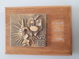 Médaille En Bronze Sur Socle Bois De La Première Batterie Du 57ème RA & - France