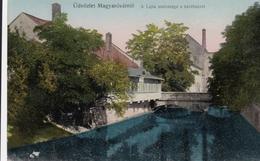AK - Mosonmagyaróvár - Idylle Mit Alter Mühle A/d Leitha 1915 - Ungarn
