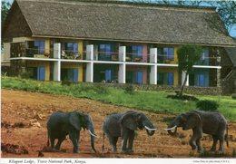 Kenya - Kilaguni Lodge - Kenya