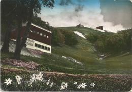 X3664 Rieti - Terminillo - Pian De Valli - Piccola Baita - Panorama / Viaggiata 1953 - Italia
