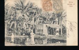 Egypte -- Moise Springs Et Suez - Egypte