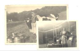 Photo Carte + Photo  - Fermière à La Traite Des Vaches Et Cour De La Ferme à ADZEUX ( Theux) En 1957- VW (  B234) - Paysans