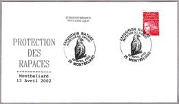 PROTECCION DE RAPACES - PROTECTION OF PREY. Montbeliard 2002 - Águilas & Aves De Presa